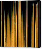 Drumstick Canvas Print