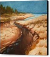 Dry River Bed Canvas Print by Nellie Visser