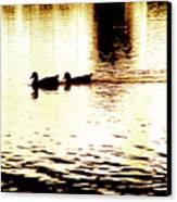 Ducks On Pond 1 Canvas Print