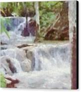Dunn River Falls Canvas Print