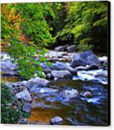 Early Autumn Along Williams River Canvas Print