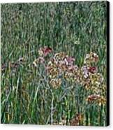 Early Fall Color Woodcut Canvas Print