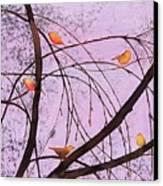 Early Spring 2 Canvas Print by Carolyn Doe