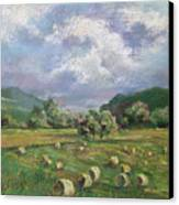 Early Summer Cutting Canvas Print