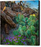 Elk Mountain Flowers Canvas Print by Inge Johnsson