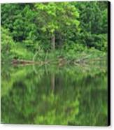 Emerald Green Reflections Canvas Print by Lori Frisch