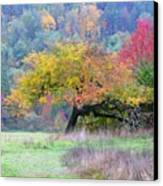 Enchanted Park Canvas Print by Lori Seaman