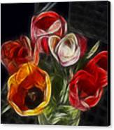 Energetic Tulips Canvas Print