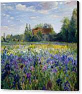 Evening At The Iris Field Canvas Print