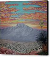 Evening In The Desert Canvas Print