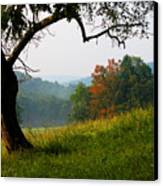Evening In The Pasture Canvas Print