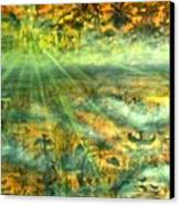 Everglades Morning Mist Canvas Print