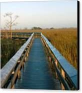 Everglades National Park Canvas Print