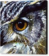 Eyes Of Owls No.25 Canvas Print