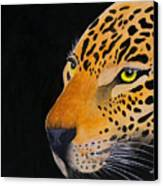 Eyes Of Prey Canvas Print