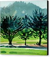 Fairway Junipers Canvas Print