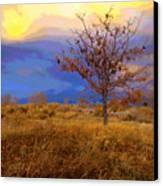 Fairytale Tree Canvas Print