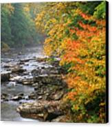 Fall Along The Cranberry River Canvas Print by Thomas R Fletcher