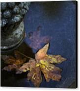 Fall At The Fountain Canvas Print