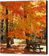 Fall At The Park Canvas Print