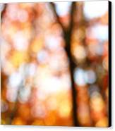 Fall Colors Canvas Print by Les Cunliffe