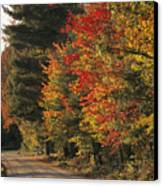 Fall Colors Line A New England Road Canvas Print by Heather Perry