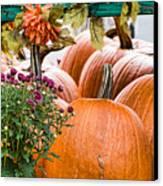 Fall Display Canvas Print