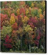 Fall Foliage In The Adirondack Mountains - New York Canvas Print by Brendan Reals