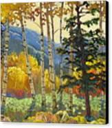Fall In The San Juans Canvas Print by Susan McCullough