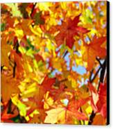 Fall Leaves Background Canvas Print by Carlos Caetano