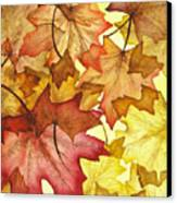 Fall Maple Leaves Canvas Print by Christina Meeusen