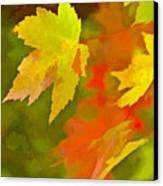 Fall Of Leaf Canvas Print