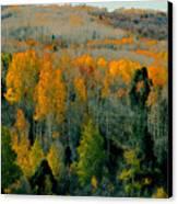 Fall Ridge Canvas Print by David Lee Thompson
