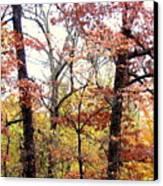 Fall Splatter Canvas Print by Deborah  Crew-Johnson