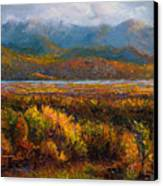 Fall Canvas Print by Talya Johnson