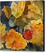 Fallen Canvas Print by Elizabeth Carr