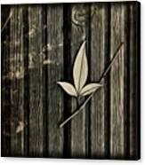 Fallen Leaf Canvas Print by John Edwards