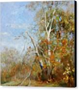Falling Branch Canvas Print