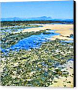 False Bay Low Tide Canvas Print by Jan Hattingh