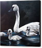 Family Of Swans Canvas Print