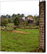 Farmland Canvas Print by Douglas Barnett