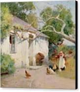 Feeding The Hens Canvas Print