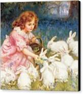 Feeding The Rabbits Canvas Print by Frederick Morgan