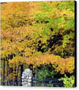 Fenced In Color Canvas Print