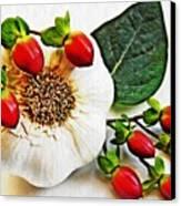 Festive Garlic Canvas Print