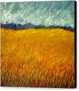 Field At Noon Canvas Print