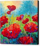 Field Of Red Poppies Canvas Print