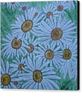 Field Of Wild Daisies Canvas Print