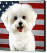 Fifi Loves America Canvas Print by Michael Ledray