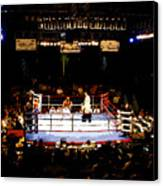 Fight Night Canvas Print by David Lee Thompson